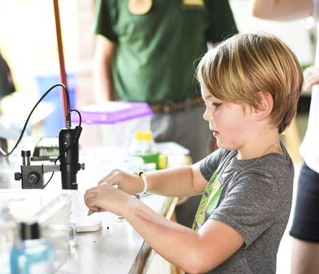 Katie Fyfe | The Journal Gazette Henry Goodrich, 7, looks through a microscope during the Monarch Festival at Eagle Marsh on Sunday.