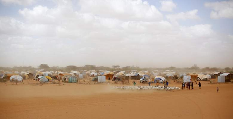 FILE - In this Aug. 7, 2011 file photo, Somali refugees herd their goats at the Ifo refugee camp outside Dadaab, eastern Kenya, 62 miles from the Somali border. (AP Photo/Jerome Delay, File)