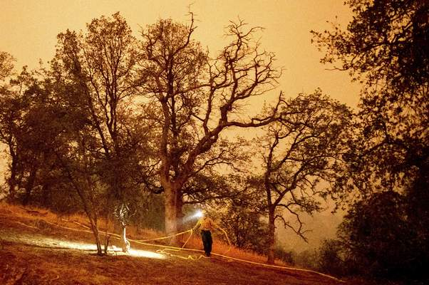 A firefighter lays hose around the Foothills Visitor Center while battling the KNP Complex Fire in Sequoia National Park, Calif., on Tuesday, Sept. 14, 2021. (AP Photo/Noah Berger)