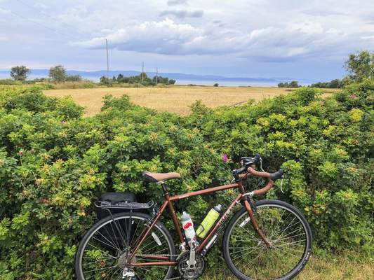 A bicycle rests against a hedge by the St. Lawrence River on Route Verte 1, one of Quebec's prime long-distance bicycling routes, outside the village of Kamouraska, on Sept. 8, 2021. (AP Photo/Calvin Woodward)
