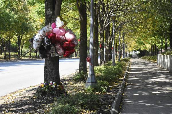 Michelle Davies | The Journal Gazette Ribbons encircle trees along Clinton Street for National Day of Remembrance for Murder Victims.