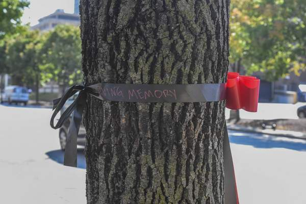 Michelle Davies | The Journal Gazette Ribbons  along Clinton Street mark The National Day of Remembrance for Murder Victims.