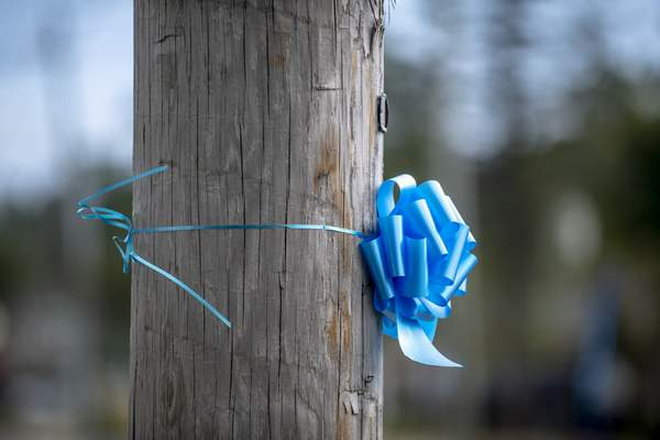 Blue ribbons in memory of Gabby Petito are scattered across her hometown of Blue Point, N.Y. on Thursday, Sept. 23, 2021. (AP Photo/Brittainy Newman)