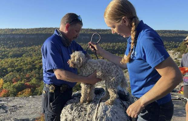 In this photo provided by New York State Parks on Wednesday, Oct. 13, 2021, Ulster County SPCA Executive Director Gina Carbonari, right, and SPCA Supervisor Chris West, left, check a rescued a 12-year-old dog named Liza, found trapped after five days deep inside the narrow, rocky crevice at Minnewaska State Park Preserve in Kerhonkson, N.Y. (New York State Parks via AP)