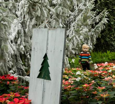 """Rachel Bellwood 